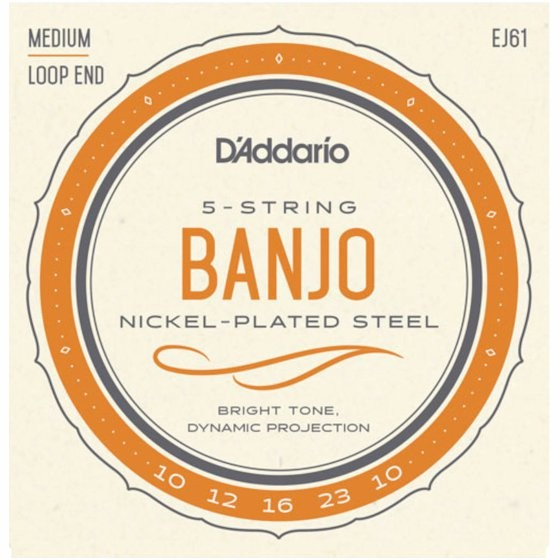 D'ADDARIO EJ61 - SNAREN BANJO 5-STRING 10-12-16-23